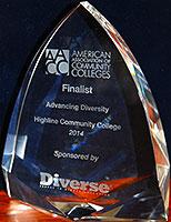 award-of-excellence-highline-2014