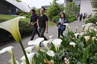 Highline College International Students