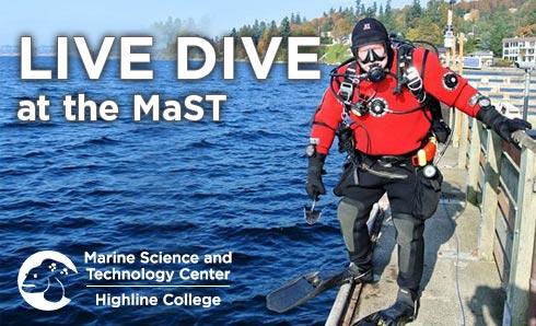 Highline College MaST Live Dive