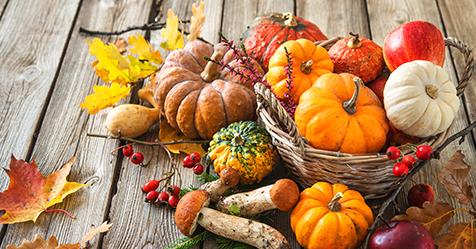 Photo of autumn pumpkins, leaves, apples, mushrooms