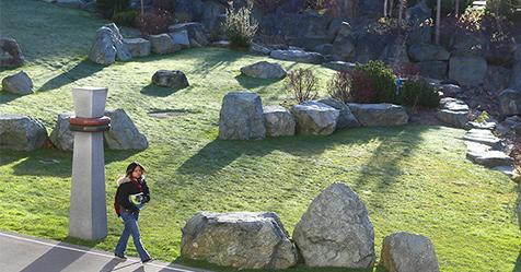 Winter campus beauty landscape.