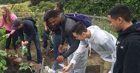 Students in Highline's Urban Ag program