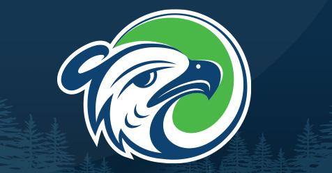 Image of new Thunderbird logo